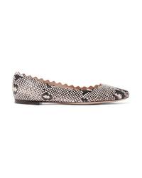 Ballerines en cuir imprimées serpent grises Chloé