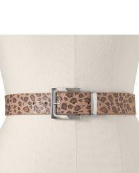 Ceinture imprimée léopard marron clair