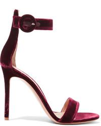 Sandales bordeaux Gianvito Rossi