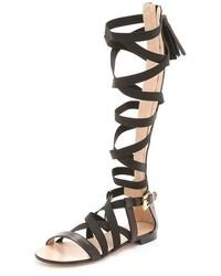 Sandales spartiates hautes en cuir noires MSGM